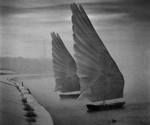 boat and wings image