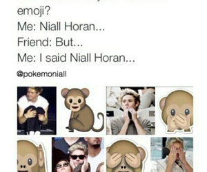 funny, niall horan, and whatsapp image