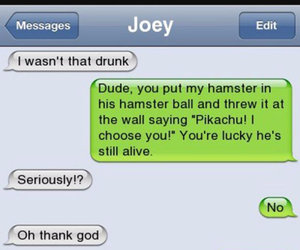 drunk, funny, and hamster image
