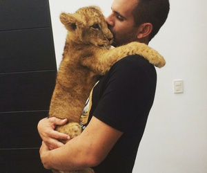 save our planet, the real man, and save big cats image