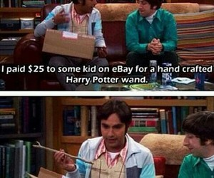 funny, harry potter, and the big bang theory image