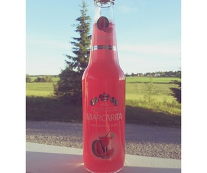 cider, cool, and summer image