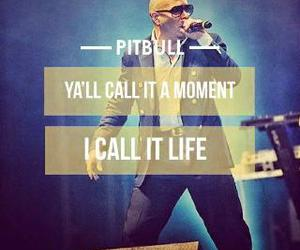 pitbull, feel this moment, and pitbull words quotes image