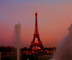 french, paris, and rose image