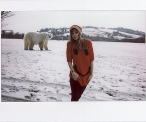 bears, fashion, and lookbook image