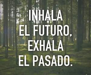 futuro, vida, and pasado image
