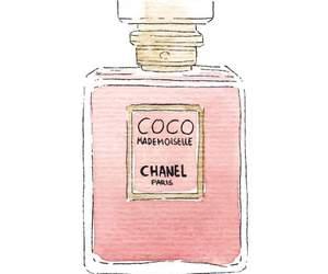 perfume, chanel, and drawing image