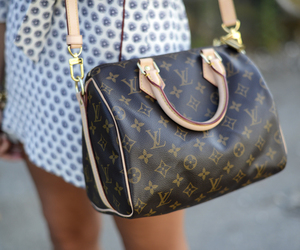bag, girl, and Louis Vuitton image
