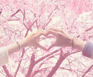 boyfriend, love, and hand image