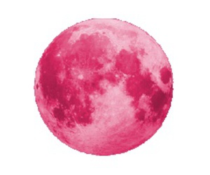 grunge, pink, and moon image