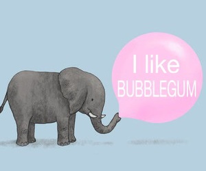 bubblegum, OMG, and elephant image