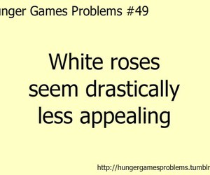 hunger games problems image