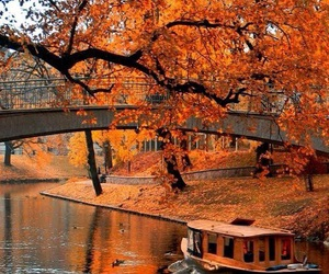 autumn, fall, and pond image