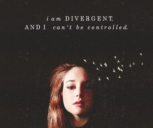 divergent, Shailene Woodley, and controlled image