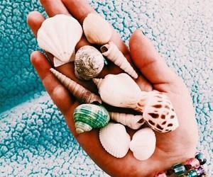 summer, shell, and sea image