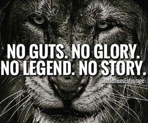 glory and lion image