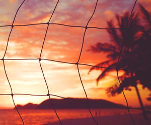 beach, palms, and panoramic image