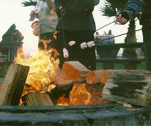 fire, marshmallow, and friends image