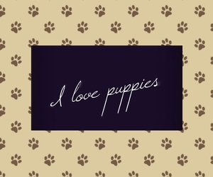 dogs, love, and puppies image