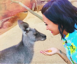 helping, animals, and demi lovato image