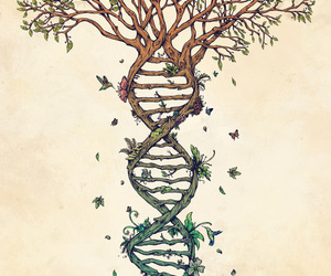 art, birds, and DNA image