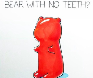 funny, lol, and bear image