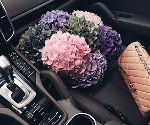 car, pink, and love image