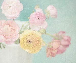 flowers, pastel, and rose image