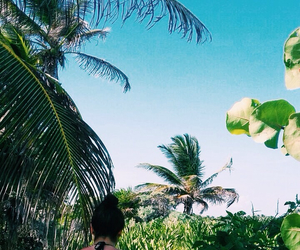 adventure, tropical, and green image