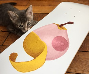 artist, cat, and deck image