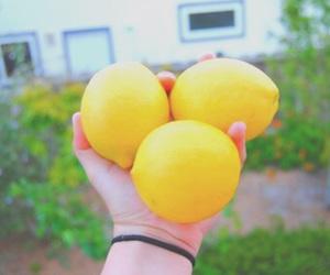 lemon, yellow, and lemonade image