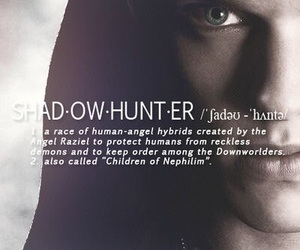 jace, shadowhunter, and the mortal instruments image