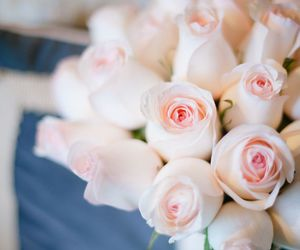 bouquet, lovely, and rose image