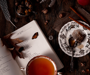 tea, autumn, and book image