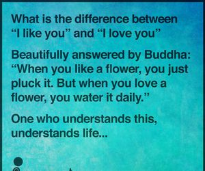 love and Buddha image