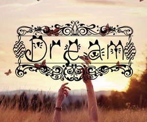 butterfly, Dream, and inspire image