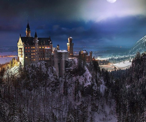castle, night, and forest image