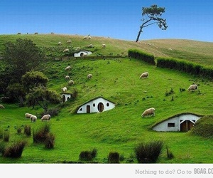 green, house, and hobbit image