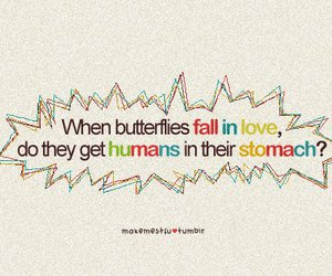 love, text, and butterflies image