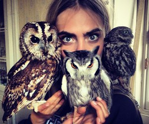 owl, cara delevingne, and model image