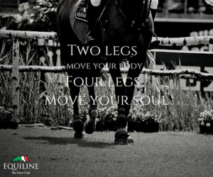 equestrian, horse riding, and style image