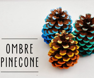 diy and pinecone image