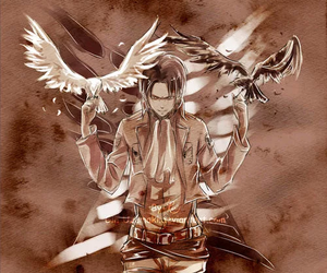 levi, shingeki no kyojin, and snk image