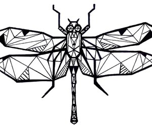 art, black and white, and dragonfly image