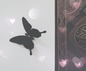 black, butterflies, and quran image