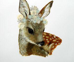 deerm image