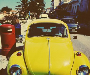 beetle, summer, and yellow image