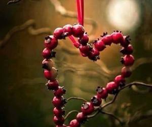 cœur image
