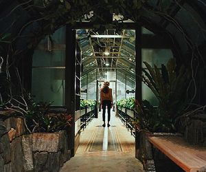 alone, greenhouse, and tunnel image