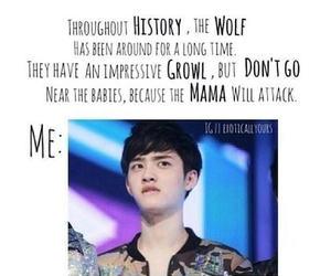 exo, funny, and growl image